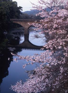 Cherry blossom and Stone bridge Festival イメージ